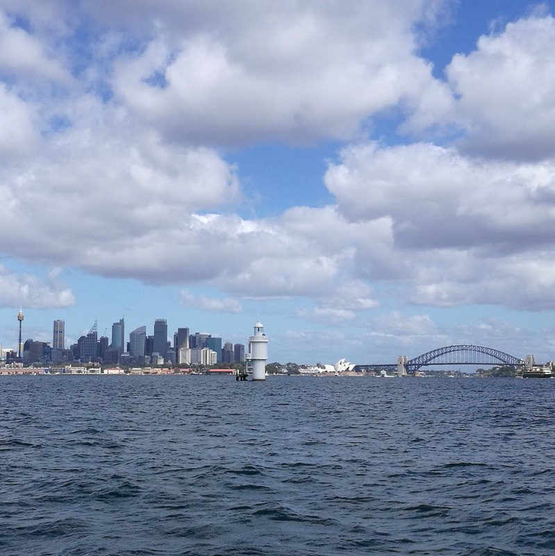 city skyline showing the Harbour Bridge